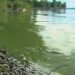 Property Owners on Hook for Lake Champlain Cleanup