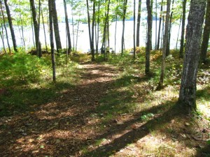 Lakesmart Buffer Zone with Meandering Mulch Bed
