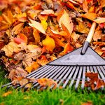 Take a Break – Retire your Rake!