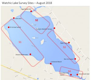 Managing the Threat from Invasive Plants | Watchic Lake Association